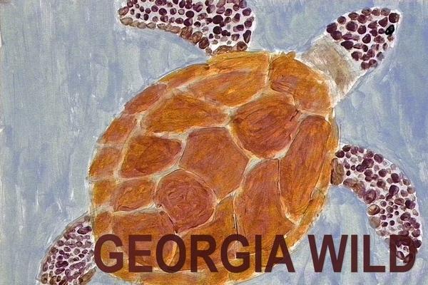 Georgia Wild masthead: sea turtle poster