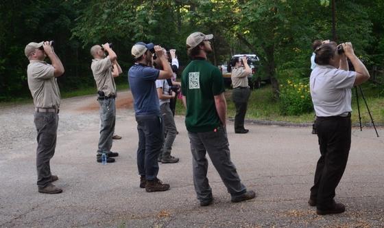 Birding Boot Camp