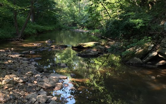 Raccoon Creek (Brett Albanese/DNR)