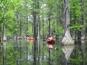 kayaking george l smith