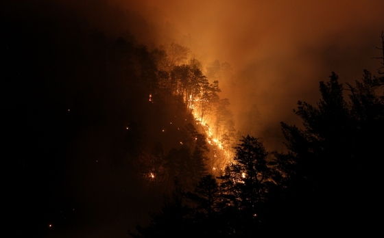 Prescribed fire at night in Tallulah Gorge (Philip Juras)