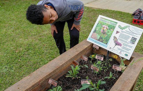 Connect to Protect planter at Oconee Elementary (Shannon Montgomery/UGA)
