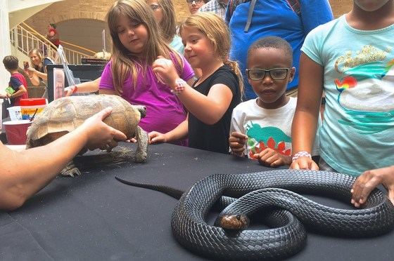 Wildlife close-ups with DNR at Fernbank (John Jensen/DNR)