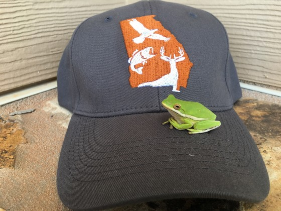 DNR Wildlife Resources Division hat