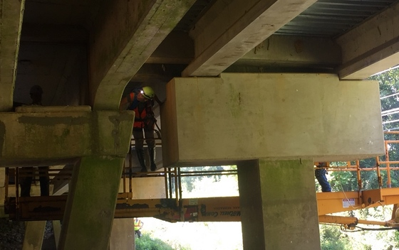 Checking a Chattooga County bridge for bats (Katrina Morris/DNR)
