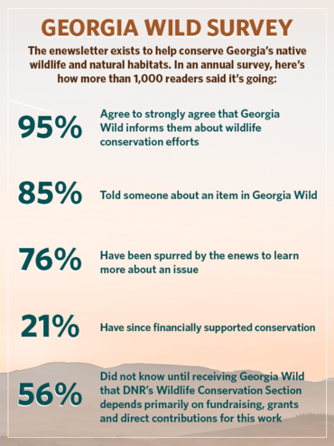 Georgia Wild survey graphic