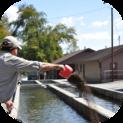 Technician feeding trout
