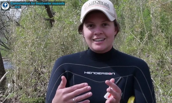DNR's Ani Popp discusses mussel conservation (National Fish and Wildlife Foundation)