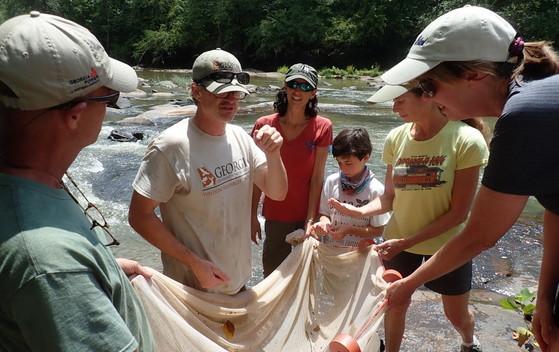 Seine-and-learn fish sampling on the Middle Oconee (Paula Marcinek/DNR)