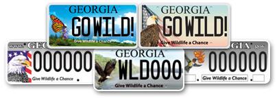 georgia conservation license plates link