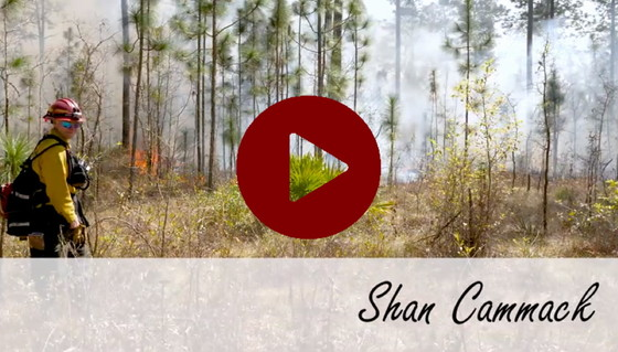 Video profile of DNR's Shan Cammack