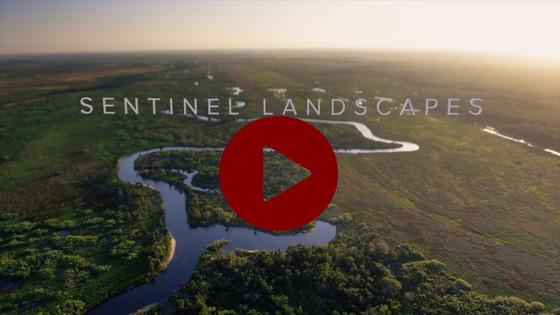 Sentinel Landscapes video