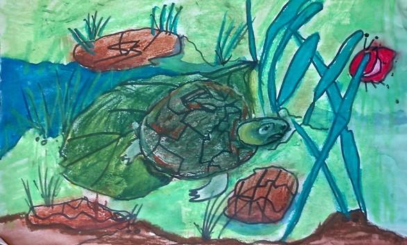 Poster artwork from a kindergartener in Fayetteville (Audrey Stadler/State Botanical Garden of Georgia)