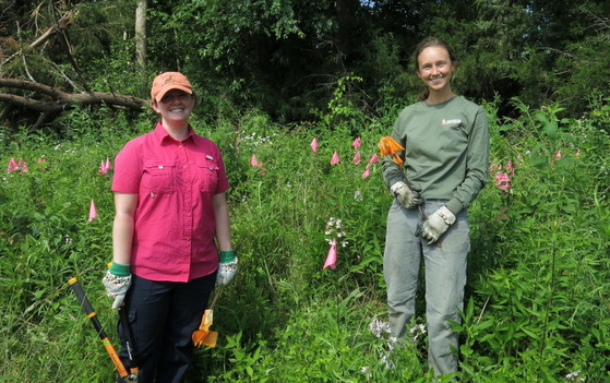 GPCA volunteers Sara Smith and Melanie Flood flag royal catchfly (DNR)