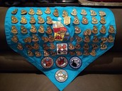Junior Ranger badges VanPattens