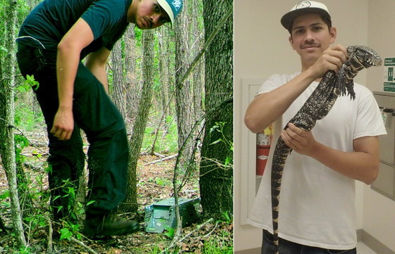 USGS' Danny Haro in the field and showing a tegu (USGS/Georgia Southern University)