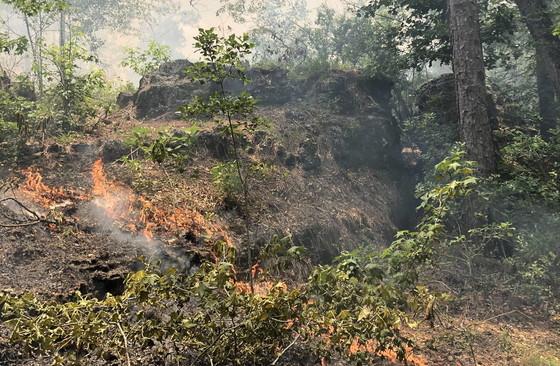 Flames creep across an Altamaha Grit outcrop at Broxton Rocks. (Ani Marty/DNR)