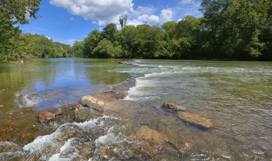 Lower Etowah River in Bartow County (Alan Cressler)