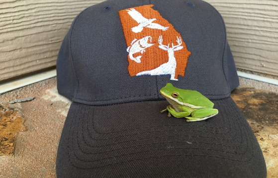 DNR Wildlife Resources Division cap