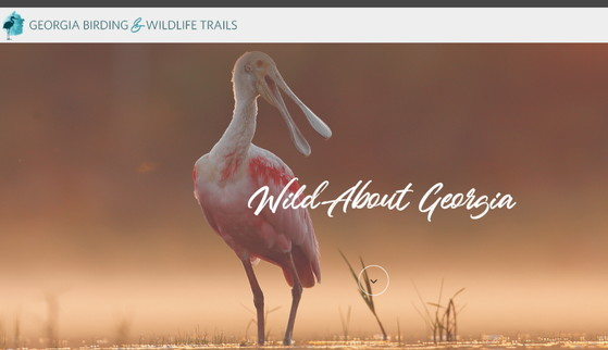 Georgia Birding & Wildlife Trails website