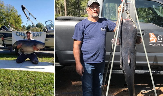 Tim Trone with new state-record blue catfish (special to DNR)