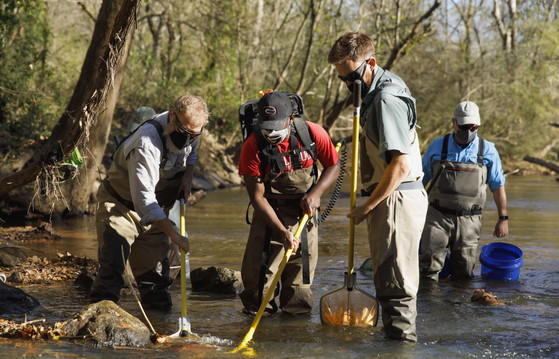 A UGA crew searches for more weather loaches in McNutt Creek (Andrew Davis Tucker/UGA)