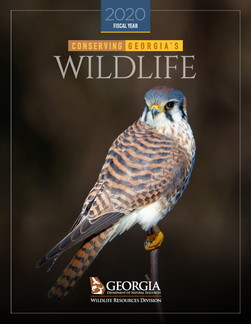 DNR Wildlife Conservation Section 2020 annual report