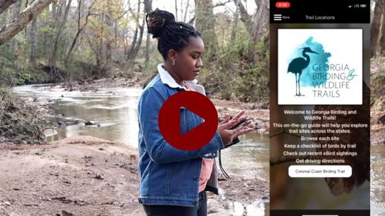 Birding video