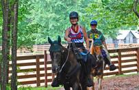 horse trail at Hard Labor Creek
