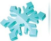 shiny snowflake