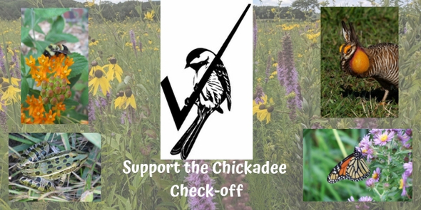 Collage of wildlife photos including the Chickadee check-off logo