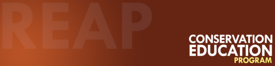 REAPCEP