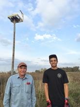 Eagle Scout Osprey nest project