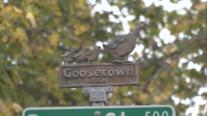 Goosetown Neighborhood