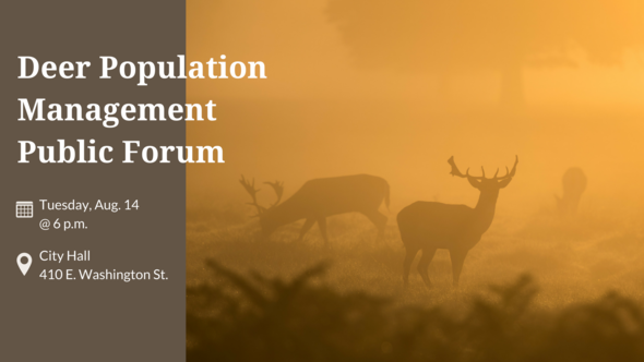 Deer population forum