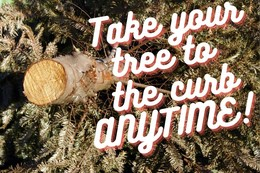 Leave your Christmas tree by the curb