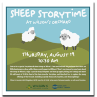 Special Sheep Storytime image