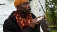 Image of Rodney Stotts and a bird