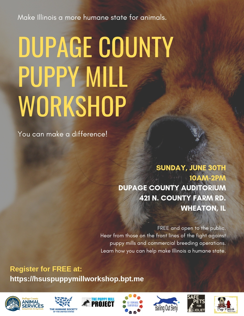 Join Us For A FREE DuPage County Puppy Mill Workshop on June
