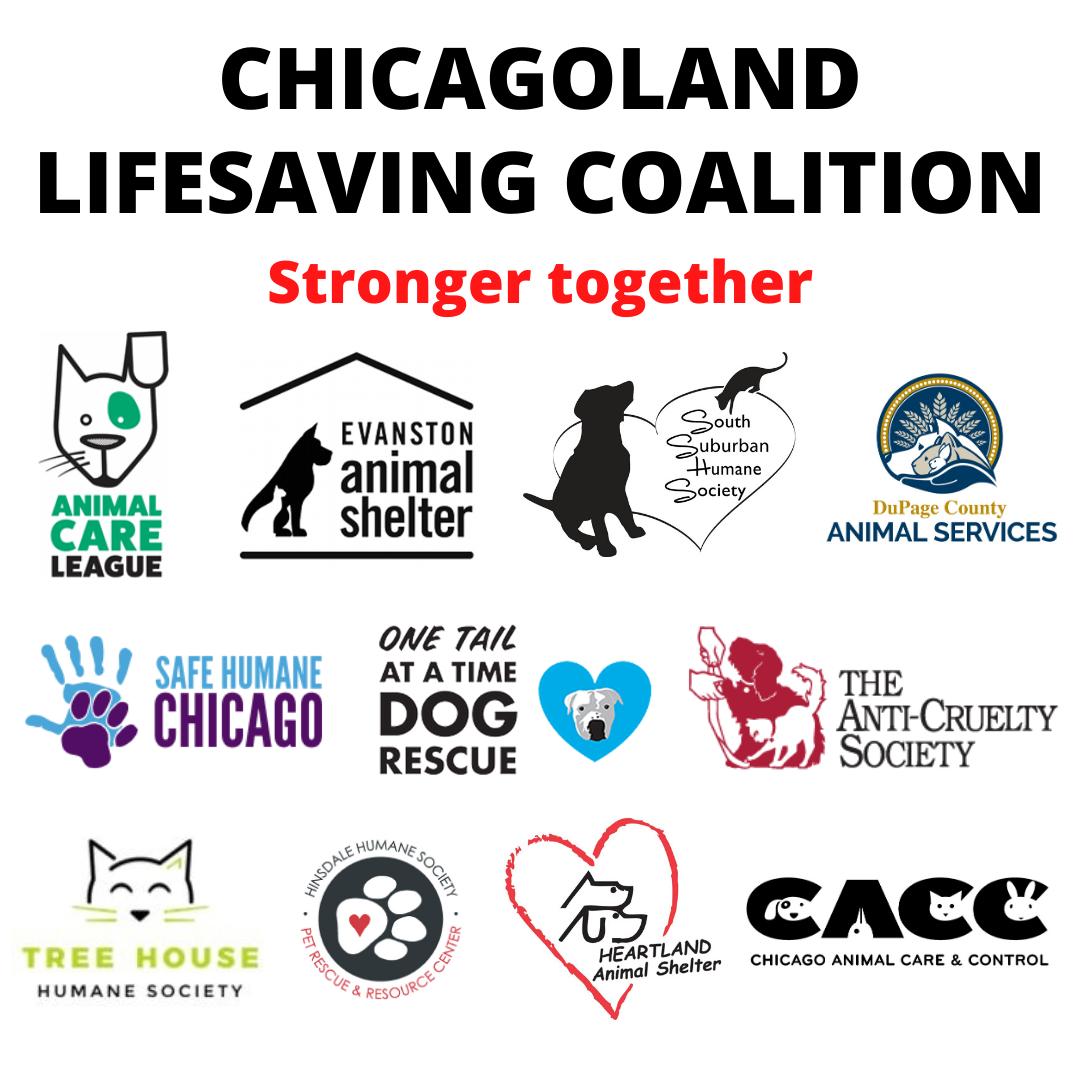 Chicagoland Lifesaving Coalition