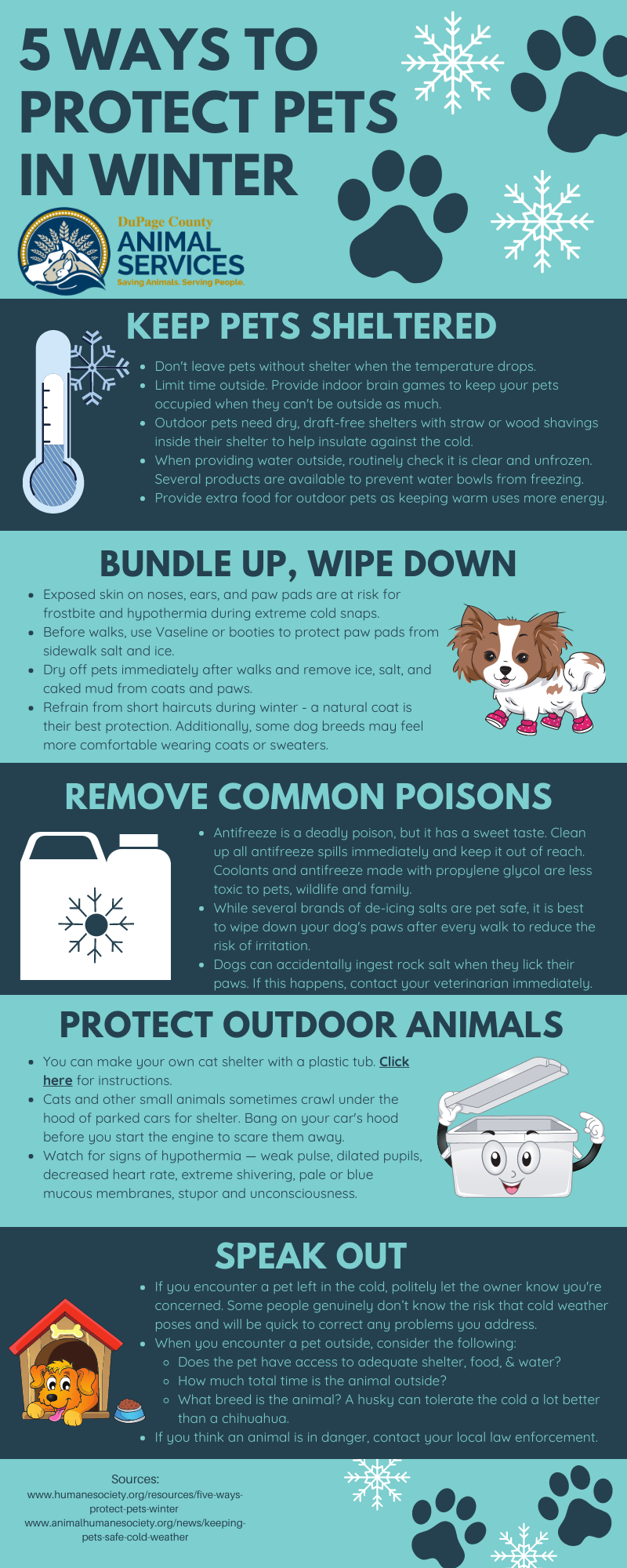 5 Ways to Protect Pets In Winter