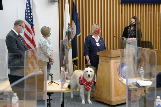 Therapy Animal Day proclamation