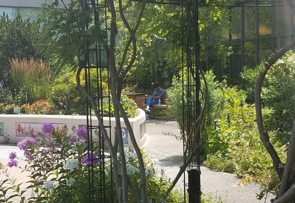 Levy Garden