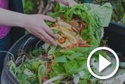 food scrap composting