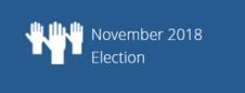 November 2018 election