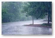 Rainfall effects
