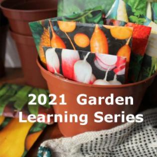 2021 Garden series