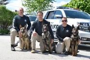 Sheriff K9 team