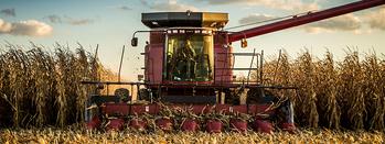 Grain buyers