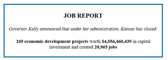 2.5.21 Job Report